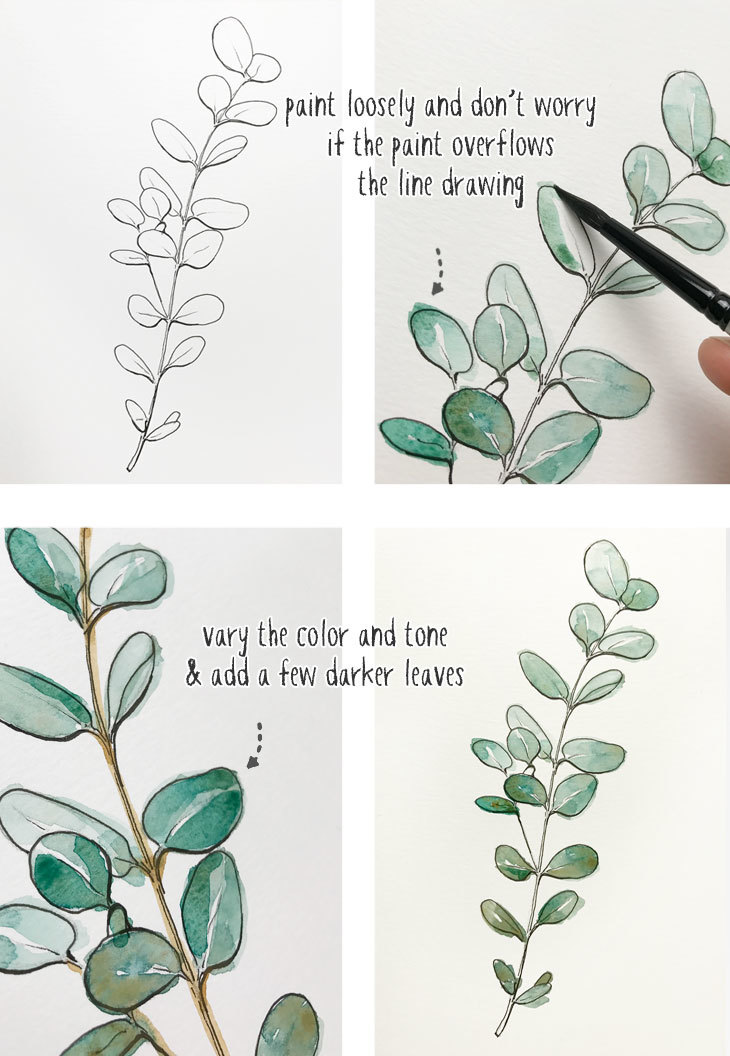 beginners line and wash eucalyptus painting