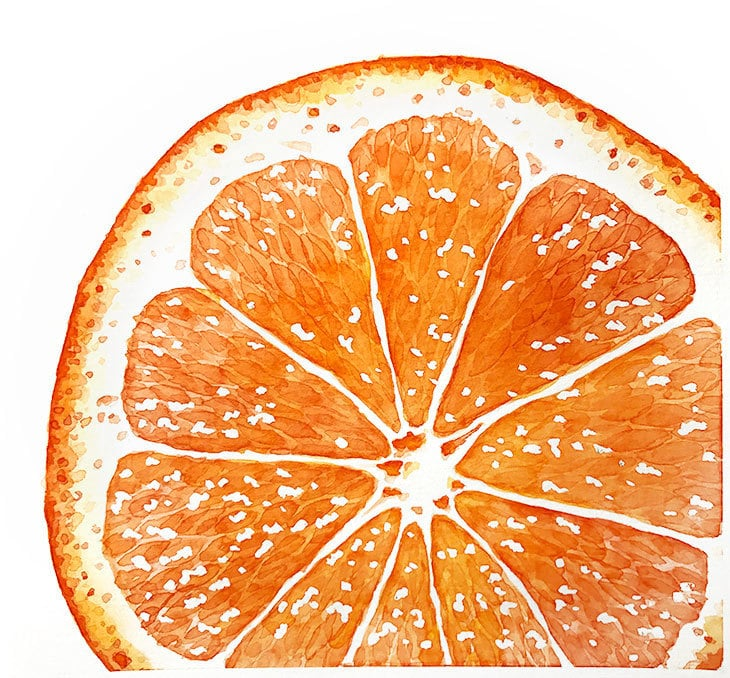 macro view watercolor orange