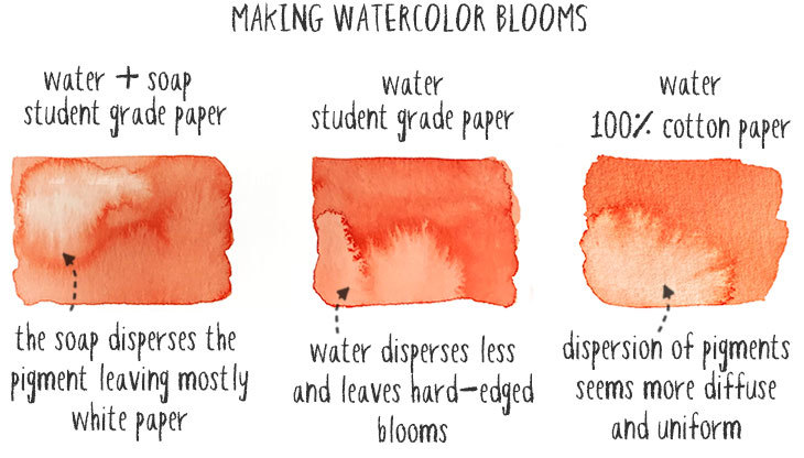 how to make watercolor blooms