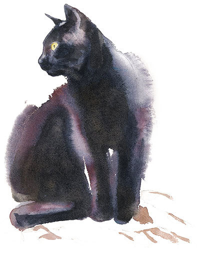 is watercolor toxic to cats