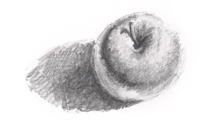 apple value study monochrome pencil sketch