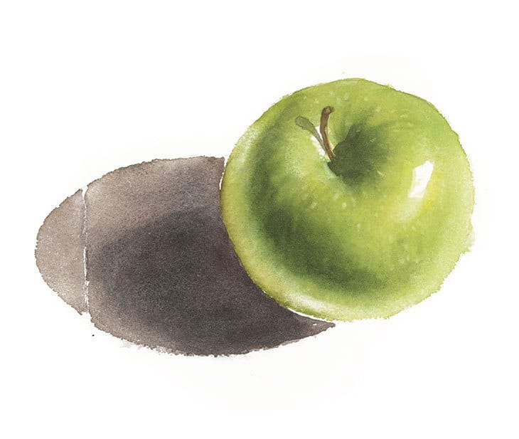 realistic apple watercolor painting