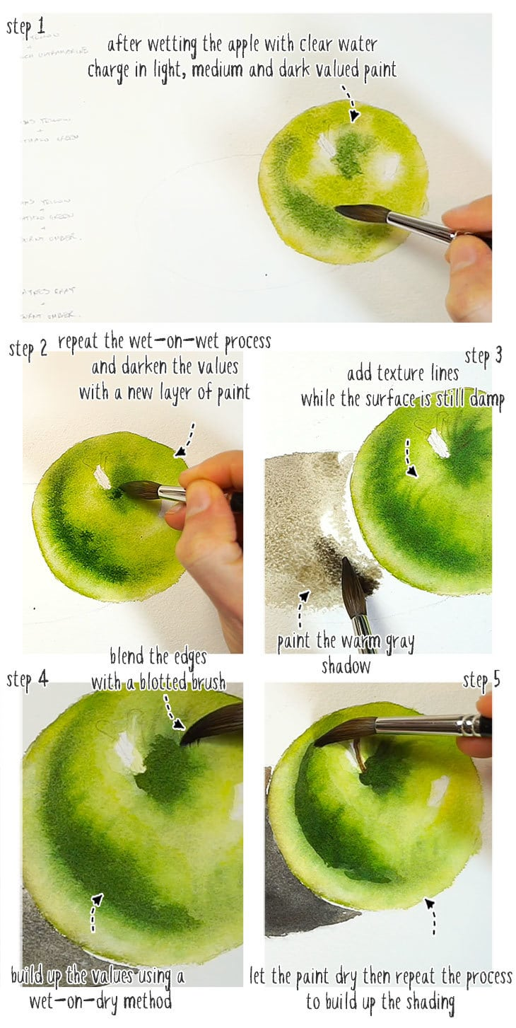 realistic watercolor step by step part 1