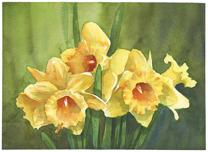 watercolor daffodils composition