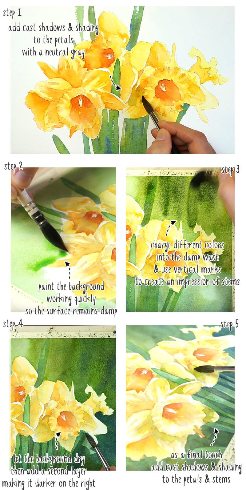 watercolor daffodils step by step tutorial stage 2