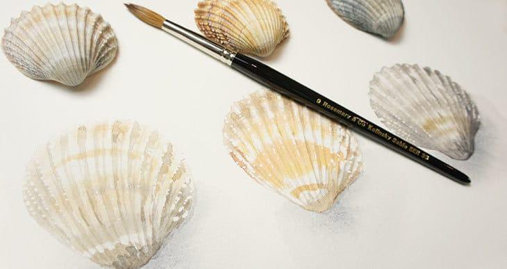 painting watercolor seashells
