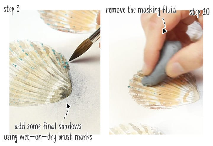 step by step watercolor seashells stage 3